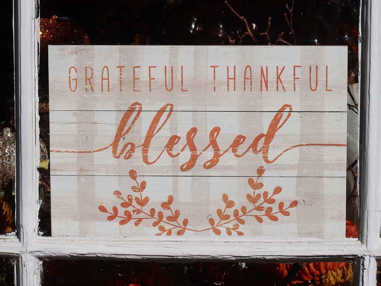 Cultivate gratitude 01