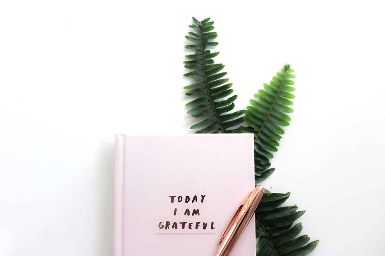 Cultivate gratitude 03